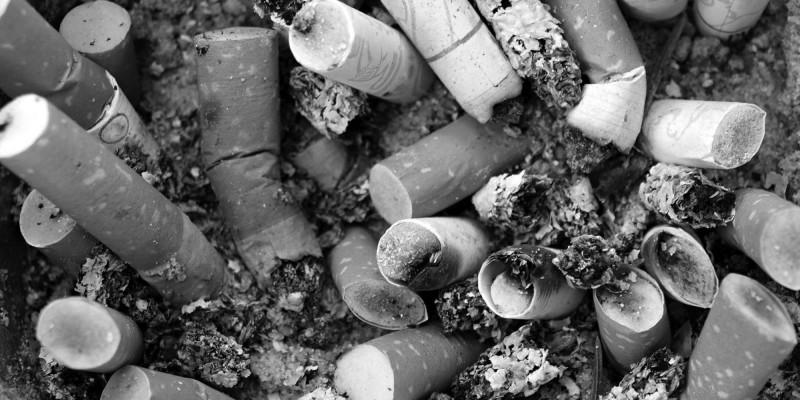 Пушенето - върхът на човешката глупост